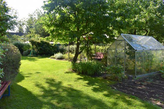 Gartenbild 3